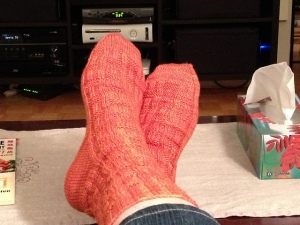Porthos Socks in Baldersquash