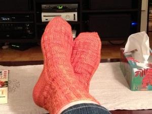 Porthos Socks in Baldersquash